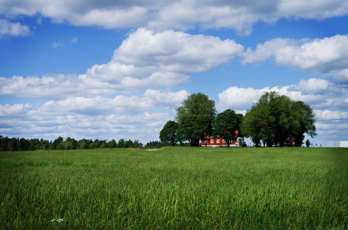Budujemy dom na działce rolnej